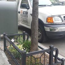 tree-guard3